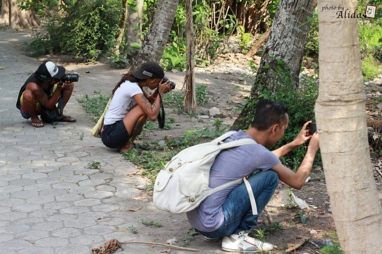 membres du collectif N&B